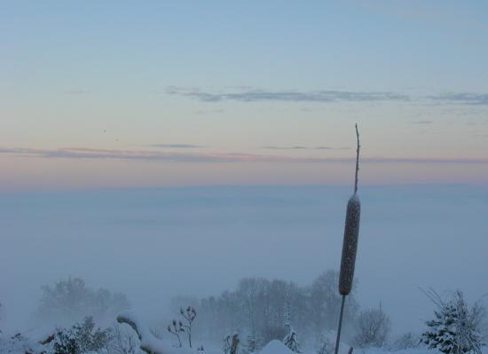 Panorama d'hiver
