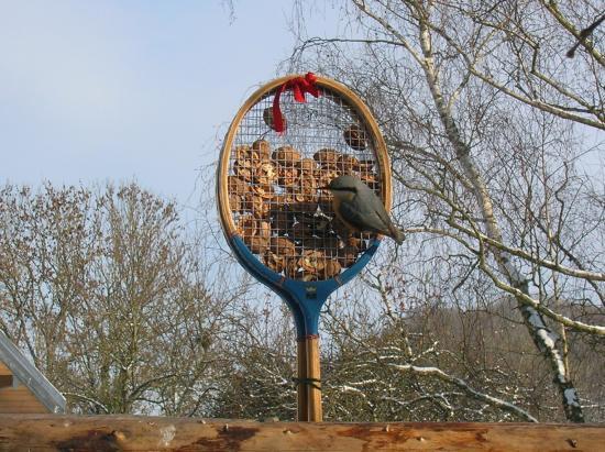 La Sitelle sur les raquettes de badminton aux noix.