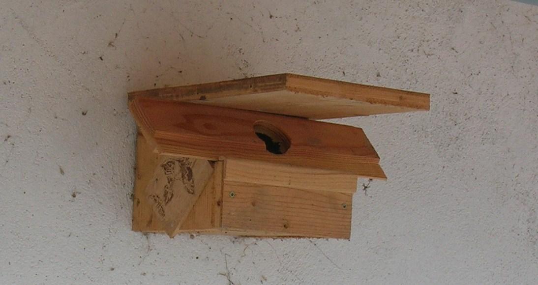 cabanons d 39 oiseaux nichoirs abreuvoirs mangeoires en photographies bien etre des oiseaux. Black Bedroom Furniture Sets. Home Design Ideas